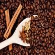 kava-z-rardomonom131
